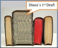 Diana's Book