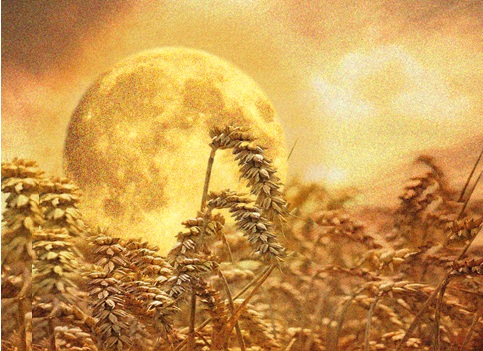 reaper's moon
