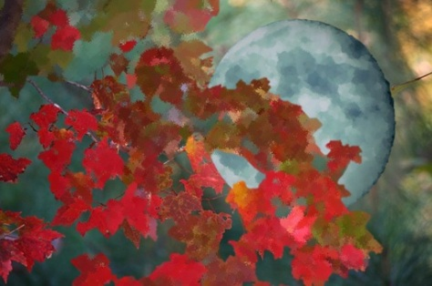 falling-moon