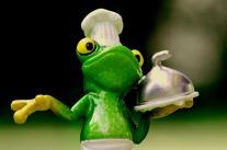 frog-1254650_960_720