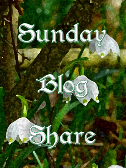 sunday-blog-share5