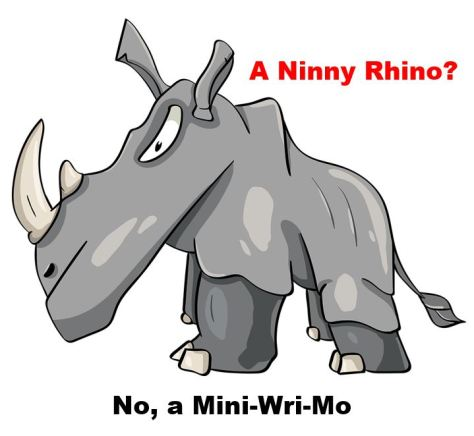 This image has an empty alt attribute; its file name is ninny-rhino.jpg